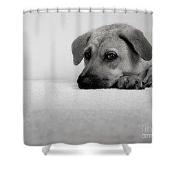 My Girl Shower Curtain