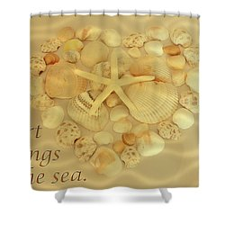 Shower Curtain featuring the photograph My Heart Belongs To The Sea by Angie Tirado
