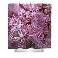 My Heart Is Pink Shower Curtain