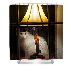 My Major Award Shower Curtain by Kenneth Albin