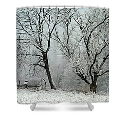 My Morning Walk  Shower Curtain