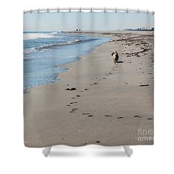 My Morning Walk Shower Curtain by Michelle Wiarda