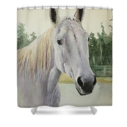 My Name Was Mouse Shower Curtain