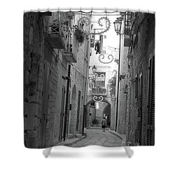 Shower Curtain featuring the photograph My Old Town by Frank Stallone