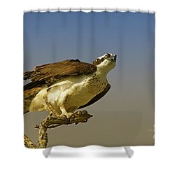 Shower Curtain featuring the photograph My Pose For You by Deborah Benoit