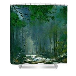 My Secret Place II Shower Curtain