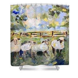 My Sheep Will Follow Me Shower Curtain by Teresa Tilley