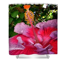 My Special Hibiscus Shower Curtain