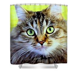 My Sweet Lil Beast Shower Curtain