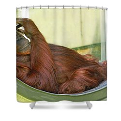 My Thinking Place Shower Curtain