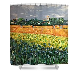 My View Of Arles With Irises Shower Curtain