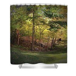 My Woodlands Ver 1 Shower Curtain