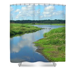 Shower Curtain featuring the photograph Myakka River Reflections by Emmy Marie Vickers