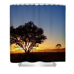 Myakka Sunrise Shower Curtain