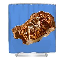 Shower Curtain featuring the digital art Myan Wall Art D by Francesca Mackenney