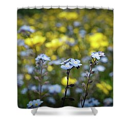 Myosotis With Yellow Flowers Shower Curtain