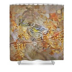 Myrtle Warbler Shower Curtain
