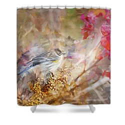 Myrtle Warbler Three Shower Curtain