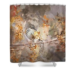 Myrtle Warbler Two Shower Curtain