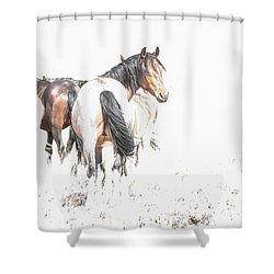 Mysteries Of A Mustang A Shower Curtain