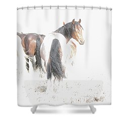 Mysteries Of A Mustang B Shower Curtain