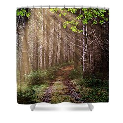Shower Curtain featuring the photograph Mystery At Dawn by Debra and Dave Vanderlaan