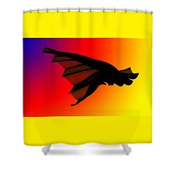Mystery In Flight Shower Curtain