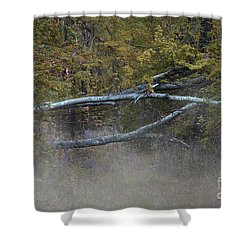 Shower Curtain featuring the photograph Mystery In The Fall by Skip Willits