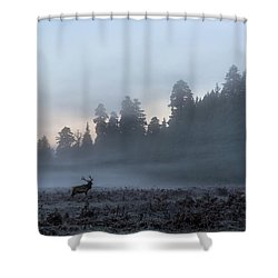 Mystic Elk Shower Curtain