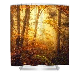 Mystic Fog Shower Curtain