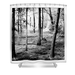 Shower Curtain featuring the photograph Mystic Peace by Steven Macanka