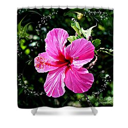 Shower Curtain featuring the photograph Mystical Bloom by The Art of Alice Terrill