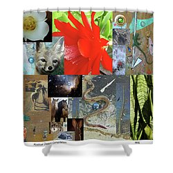 Mystical Desert Compilation Shower Curtain by Mary Ann  Leitch