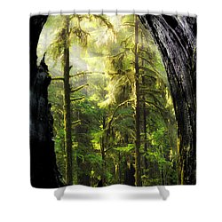 Mystical Forest Opening Shower Curtain