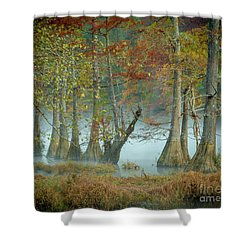 Shower Curtain featuring the photograph Mystical Mist by Iris Greenwell