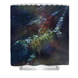 Mystical Moss - Series 2/2 Shower Curtain