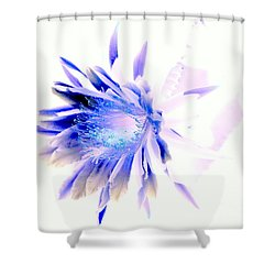 Mystical Phenomenoms Of The Southwest Cactus Orchid Shower Curtain