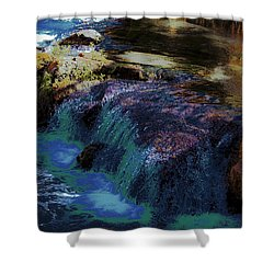 Mystical Springs Shower Curtain
