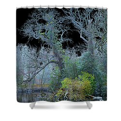Mystical Wintertree Shower Curtain