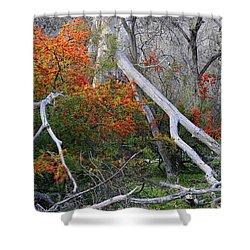 Mystical Woodland Shower Curtain