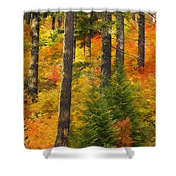 N W Autumn Shower Curtain by Wes and Dotty Weber