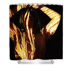 Nadia Shower Curtain by Arla Patch