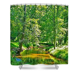 Nadine's Creek Shower Curtain by Kathy Kelly
