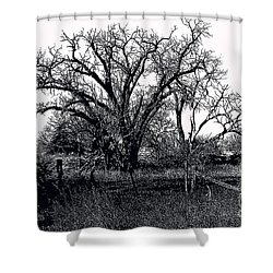 Naked Beauty Black And White Shower Curtain