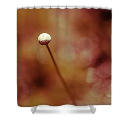 Naked Dandelion Shower Curtain