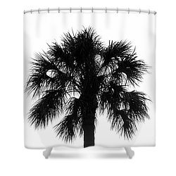 Naked Palm Shower Curtain by David Lee Thompson