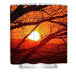 Naked Tree At Sunset, Smith Mountain Lake, Va. Shower Curtain