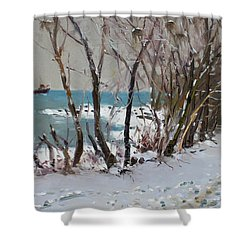 Naked Trees By The Lake Shore Shower Curtain by Ylli Haruni