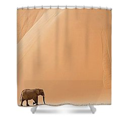 Namibia Shower Curtain by Happy Home Artistry