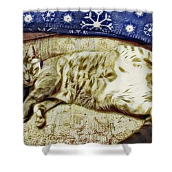 Nap Position Number 16 Shower Curtain by David G Paul